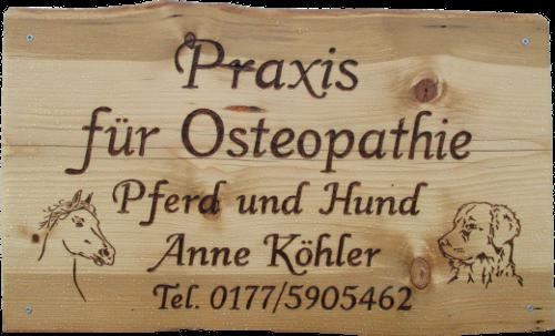 Osteopathie für Pferde und Hunde in MV